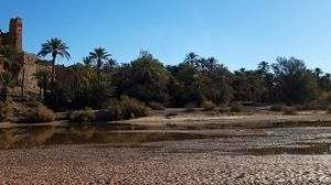 excursion ouarzazate oasis