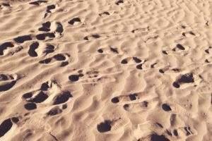 excursion Maroc désert