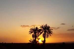 excursion désert maroc