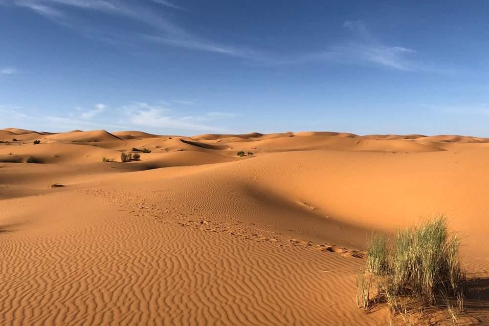 voyage Sahara Maroc