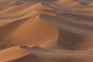 excursion desert marocain