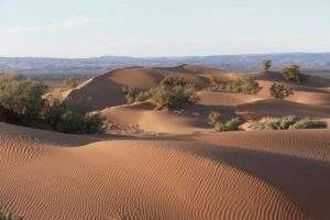 séjour désert maroc