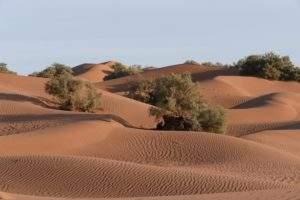 bivouac maroc désert
