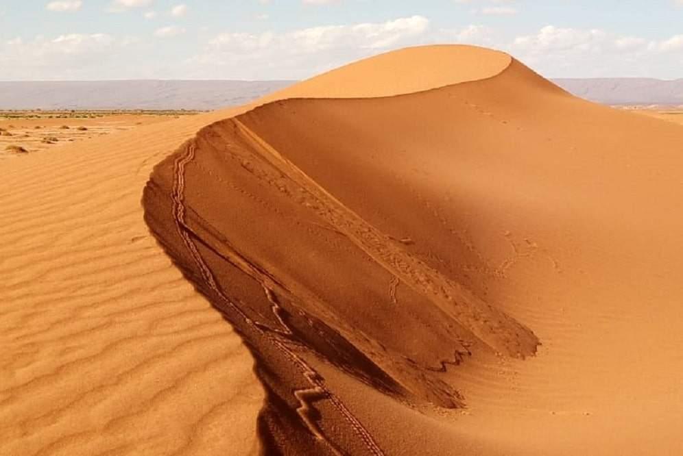 trek désert Sahara