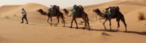 Mhamid desert trips