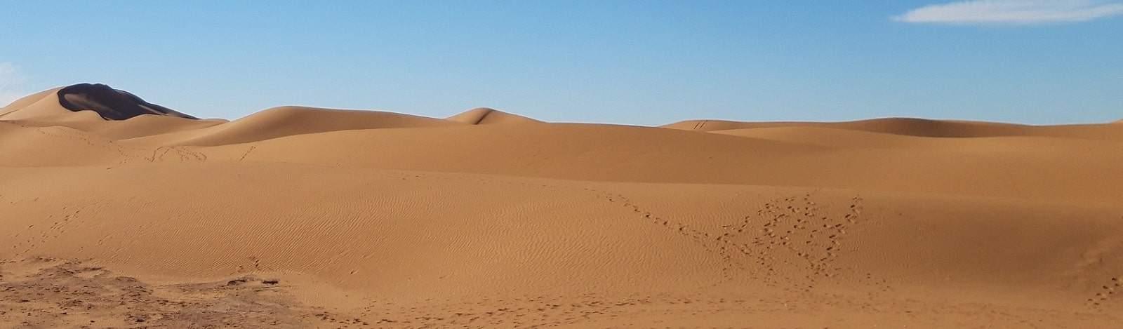 excursion dunes de chegaga