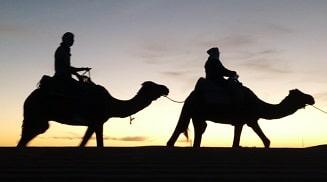 Camel ride Erg Chegaga