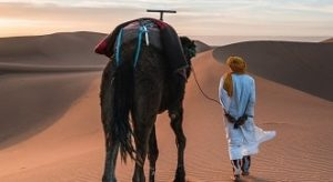 Merzouga trip from Ouarzazate