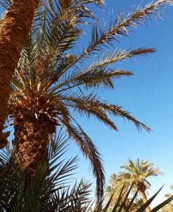 morocco holidays 2020