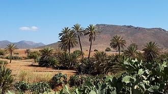 Agadir excursion tour