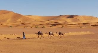 trek Merzouga 3 jours